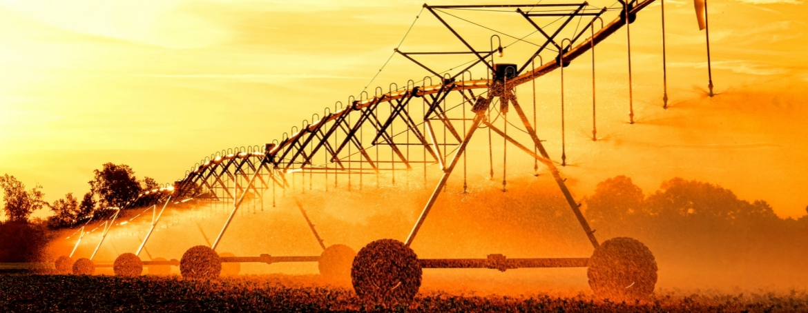 Agricultural irrigation center pivot over growing crop in a field before sunset